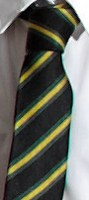 Gold-SchoolTie-CaistorYarboroughAcademy-Caistor-UniformDirec-MAINIMG-200h
